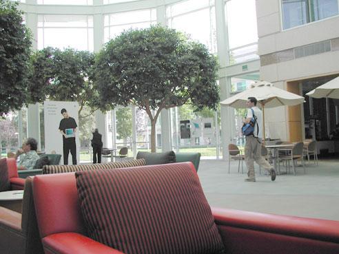 Офіс компанії Apple. Фото 4