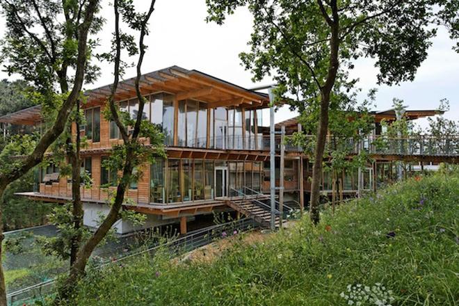 Зелений офіс. 5 простих способів зробити ваш офіс екологічним.. Фото 2