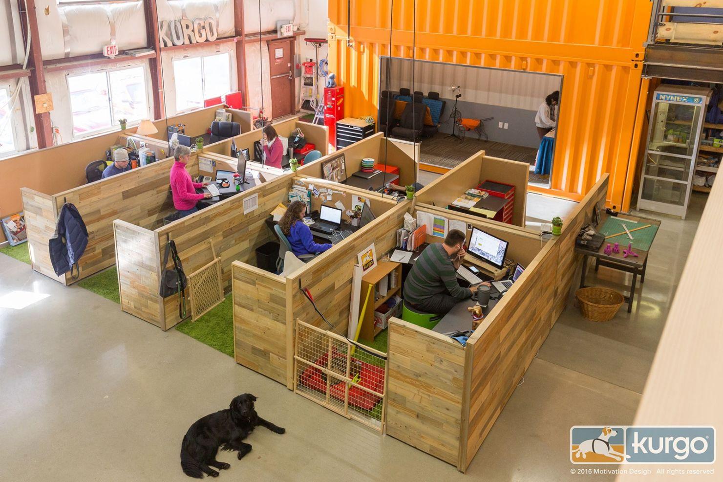 Kurgo - офіс в якому люблять собак. Фото 2