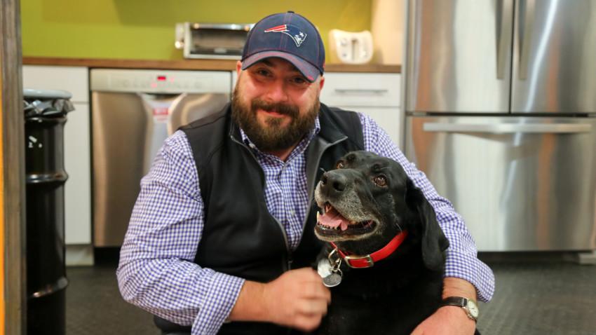 Kurgo - офіс в якому люблять собак