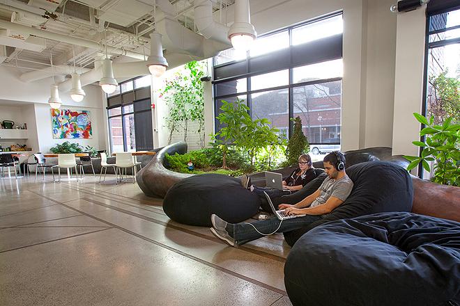 Зелений офіс компанії з розробки програмного забезпечення в Колорадо. Фото 3